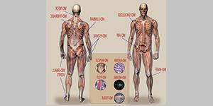 Terapia zzastosowaniem KOLAGENU MD