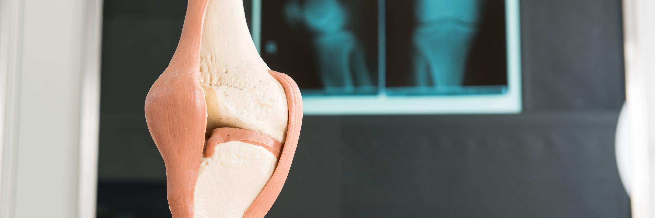 Poradnia Urazowo-Ortopedyczna